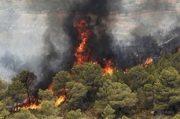 مردم مراقب وقوع حریق در مناطق طبیعی باشند / آمادگی کامل برای اطفاء حریق در مناطق