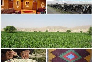 اشتغالزایی ۲۴۷ نفر با افتتاح ۳۳ پروژه بخش کشاورزی در قم