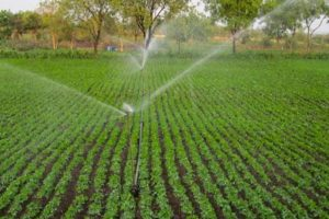 آبیاری 4 هزار هکتار از اراضی کشاورزی قم با شیوه های نوین