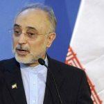 صالحی: نیروگاه بوشهر معادل ۱۱ میلیون بشکه نفت صرفهجویی میکند