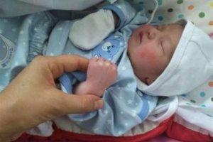"""قم نیوز - """"فاطمه"""" و """"علی""""محبوبترین نام انتخابی برای فرزندان در شهر کریمه اهل بیت (ع)"""