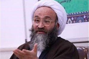 عضو خبرگان رهبری: اسلام و تشیع با طلوع امام رضا(ع) از نورانیت خاصی برخوردار شد