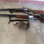 دستگیری سه شکارچی متخلف در تالاب مره قم