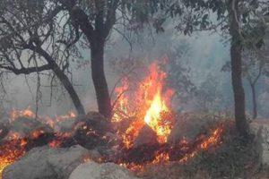 آتش به هزار هکتار از مراتع قم خسارت زد