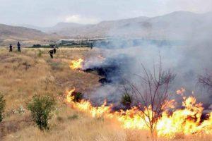 1050 هکتار از مراتع قم در آتش سوخت