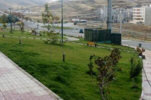 وجود ۲۶ میلیون متر مربع فضای سبز در محدوده و حریم شهر قم