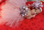 عروس شدن نمادین نوزادان دختر در قم + تصاویر