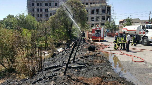 آتشسوزی باغ سمیه قم اطفاء شد