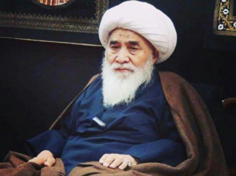 آیت الله محقق کابلی عالمی جهادگر و در خدمت مکتب اهل بیت بود