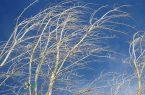 پیش بینی وزش باد شدیدبرای ساعات پایانی شنبه در قم – پایگاه خبری شهرکریمه | اخبار ایران و جهان